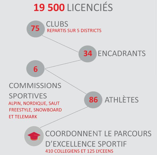 19500 licencies